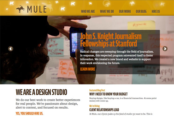Mule Design Studio