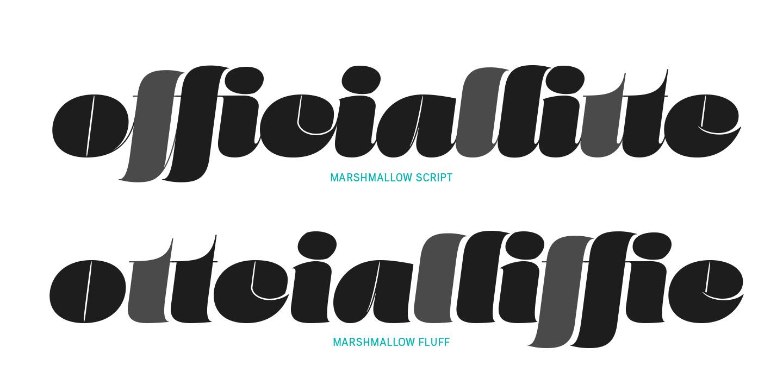 Marshmallow type specimen from Positype